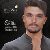 { wren's nest } Seth Shape for Catwa Dude Bento head