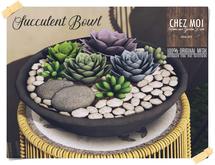 Succulent Bowl ♥ CHEZ MOI
