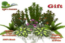 Lady's Garden -Tropical flowerbed (Gift) 12 Prim