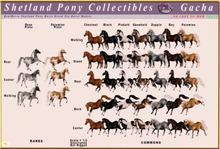 *E* Shetland Pony Model Canter Palo Pinto RARE