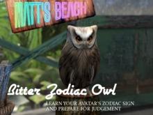 Zodiac Owl - Be judged by your SL Zodiac