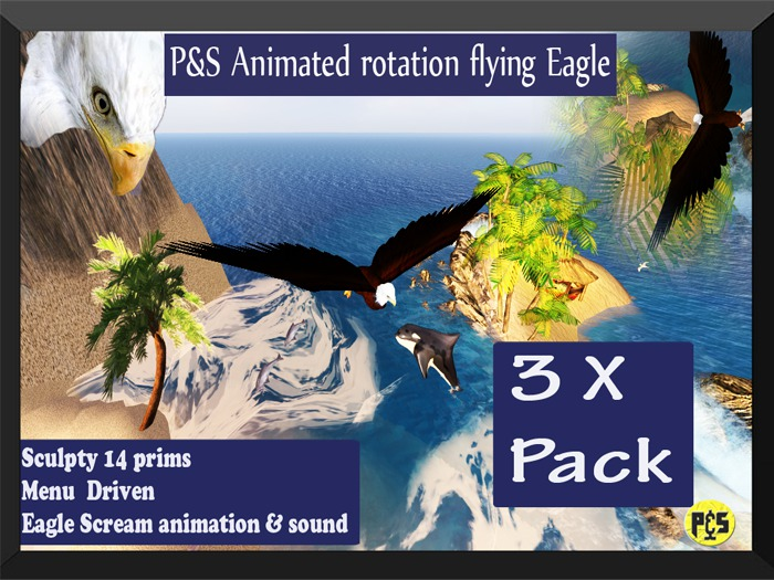 S Animted Eagle Cycle 3x Pack Plakat