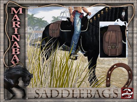 saddlebags QH+WB