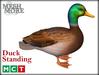 M&M Mesh Duck Standing [Boxed]