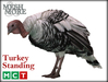 M&M Turkey Standing [Boxed]