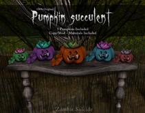 :Z.S: Pumpkin Succulents