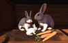 Cj hutch with bunny family 03
