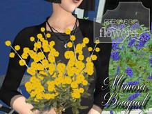 p-a-b mimosa bouquet