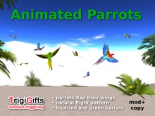 Animated Parrots (TrigiGifts)