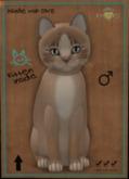KittyCatS Box - Genesis - Mocha II