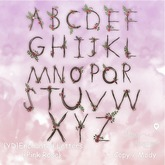 {YD} Enchanted Letters -  Pink Rose