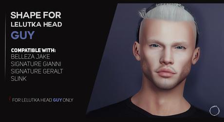 """Lelutka Head """"GUY"""" Shape 2.0"""