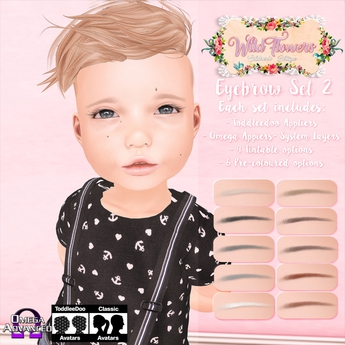 {WF} Eyebrows Set 2  [BOX]