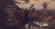 Choke Berry Tree Animated 4 Seasons