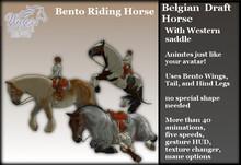 ~*WH*~ Bento Riding Horse (Western Belgian) 1.0
