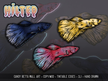 HILTED - Candy Betta Wall Art