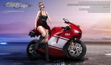 MotoDesisgn BOX - DESMO16 - EVO