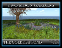 TMG - THE GOLDFISH POND*