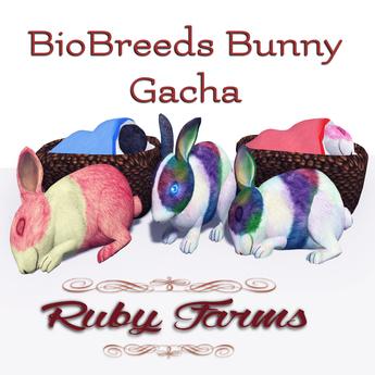 [Ruby Farms] BioBreeds Bunny Gacha