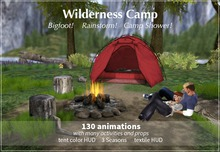 Wilderness Camp with Bigfoot! Rainstorm! Camp Shower!