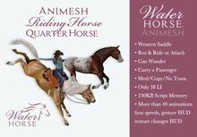 ~*WH*~ Animesh Horse (Western Quarter Horse)