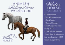~*WH*~ Animesh Horse (English Warmblood)