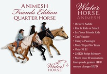 ~*WH*~ Animesh Friends Edition (Western Quarter Horse)