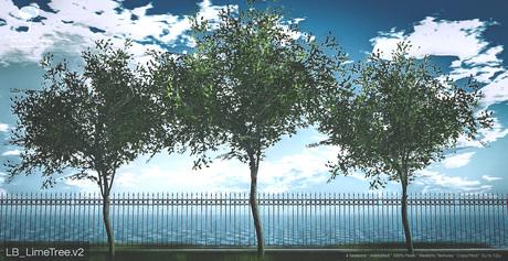 Lime Tree v2 Animated 4 Sesons