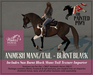 The Painted Pony~ Burnt Black WH Animesh Mane/Tail, for the *WH* Animesh horses