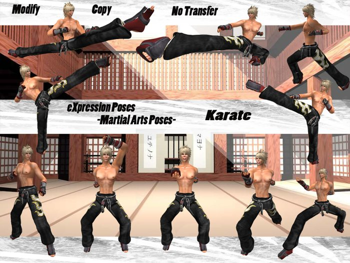 Second Life Marketplace Expression Poses Martial Arts Karate