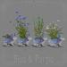 *pm* Wildflower Wabbits Planters: Blue & Purple