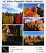 W. Winx-Pumpkin Patch- Harvest Size