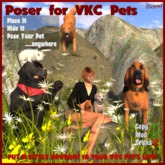 Vavoom! Poser For Pets (Boxed)