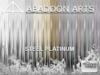 Abaddon arts   tpet   hair labels steel platinum slmp