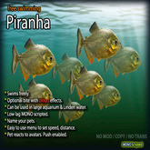 Piranha (Free-Swimming)