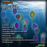 Jelly Fish (Free-Swimming)