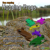 Frog HUD (Free Roaming Waypoints + Follower)