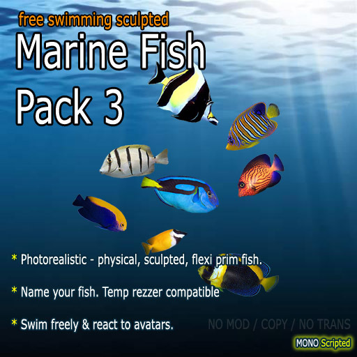 Marine Fish - Pack 3 (Free-Swimming)