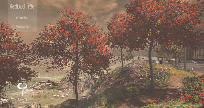 LB RedBud Tree Animated 4 Seasons