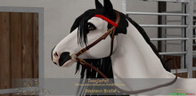Cheval D'or - TeeglePet - Western Bridle. (Wear Me To Unpack.)