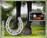 Horseshoe - Teeglepet - American Paint