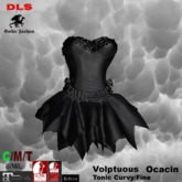 Corset dress with tutu skirt black boxed