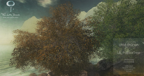 LB Poplar Tree v1 Animated 4 Seasons