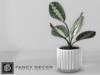 Fancy Decor: Ruben Potted Plant
