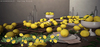 DISORDERLY. / Spring Fresh / Lemon Centerpiece