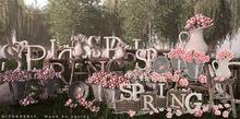DISORDERLY. / Wood be Spring / Pink Set