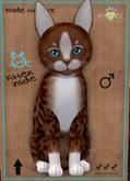 KittyCatS Box - Fur: Genesis - Ginger II