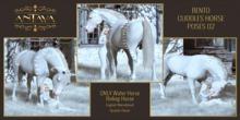 :: ANTAYA :: WHRH Bento cuddles horse poses v2