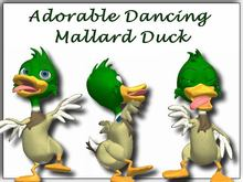 Adorable Animated Dancing Mallard Duck