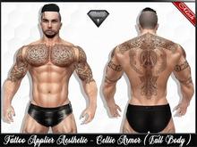 [Hud ]Tattoo Applier Aesthetic - Celtic Armor ( Full Body )